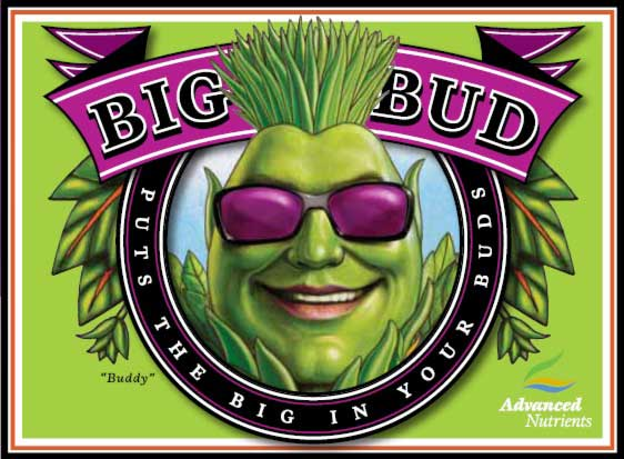 Big Bud Advanced