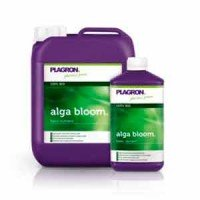 Alga Bloom
