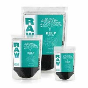 Kelp Raw