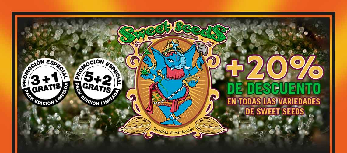 Descuento Sweet Seeds
