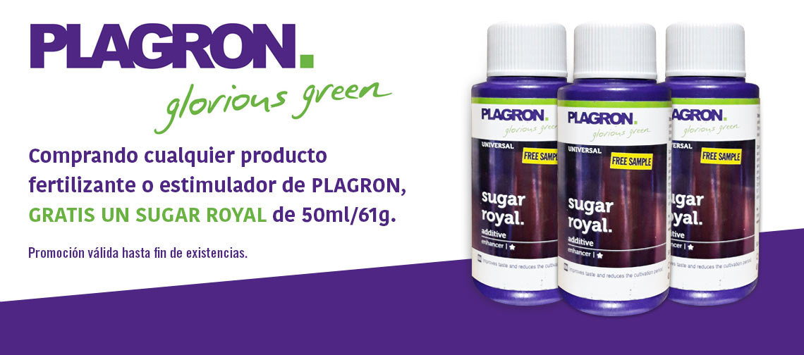 Royal Sugar