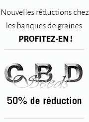 cbd seeds reduction