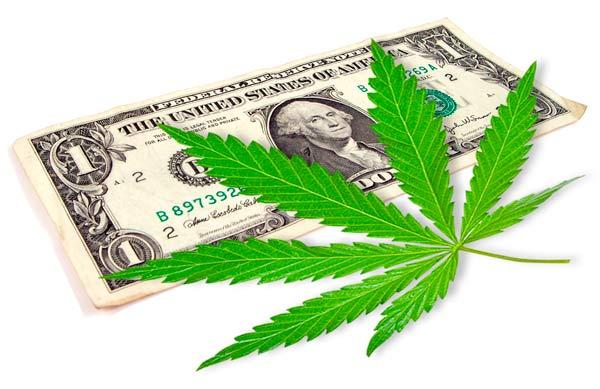 Cannabis big Corporations