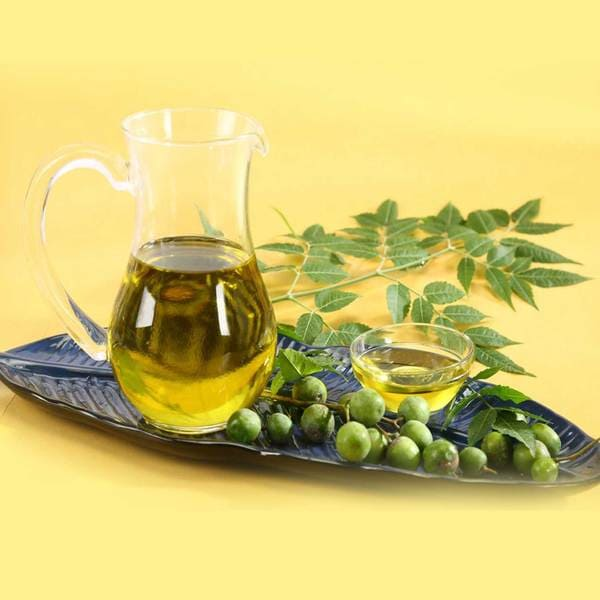Neem Oil Properties Benefits and Use