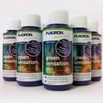 Green Sensation 50ml gratis en cada pedido Plagron