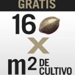 Consigue 64 semillas gratis por la compra de un kit de cultivo