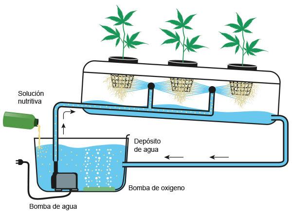 Ahorrar agua en el cultivo de marihuana santyerbasi blog for Sistemas de ahorro de agua