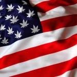 Legalizacion cannabis