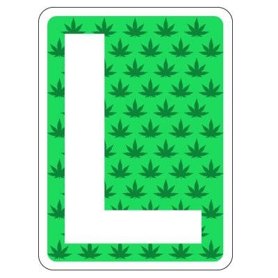 primer cultivo cannabis