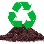 Reutilizar tierra para cultivar marihuana