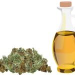 Aceite de cannabis: Prepara tu medicina