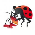 Lucha biológica: Depredadores contra plagas